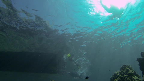 Underwater shot of tourists snorkeling by a motorboat Footage