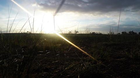 Sunrise In The Desert Near The Mongolian Yurt stock footage