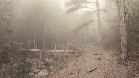 mist-shrouded mountain path and the bridge across the river in the forest Archivo