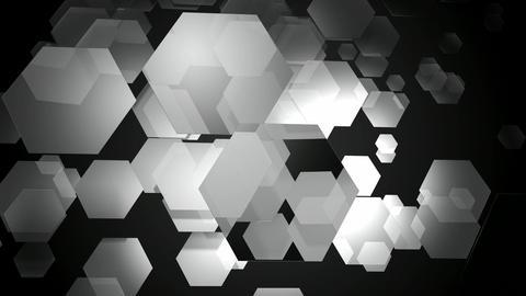 white hexa motion Animation
