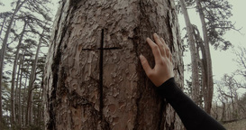 hand girl in black rests on a tree trunk on which is carved a cross close up Footage