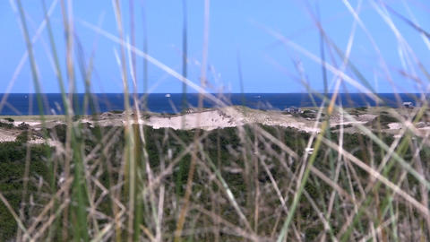 Race point beach and Atlantic ocean view through tall grass from high vantage po Footage