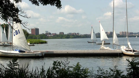Sailboats enter yacht club on Charles river in Boston Footage