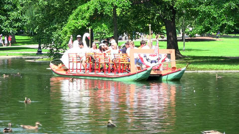 Tourists And Visitors Riding A Swan Boat At Boston Public Garden As Ducks And Wa stock footage