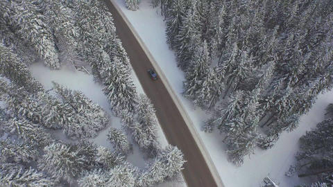 AERIAL: Car driving through snowy pine forest in winter Footage
