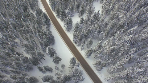 AERIAL: Flying over the road in winter pine forest Footage