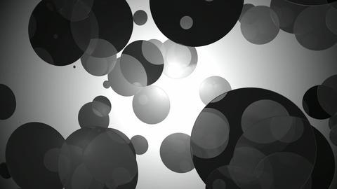 black dot movement Animation