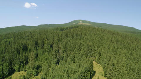 Aerial Panorama of Woods and Mountains. Aerial Video Footage