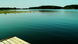 Serene Lacustrine Landscape With Lotus Leaves And A Corner Of Wooden Pier Footage
