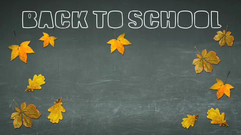 Back To School Writing On A Chalkboard stock footage