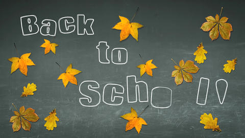 Back To School On A Board With Autumn Leaves stock footage