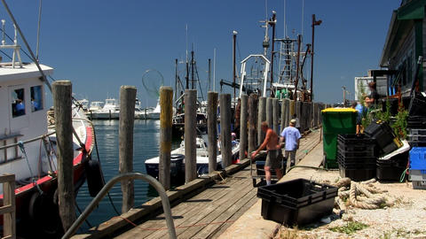 Fisherman hauling crates along dock at Menemsha fishing village on Martha's Vine Footage