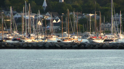 A sea of sailboats and masts sit quietly in Vineyard Haven harbor at Martha's Vi Footage
