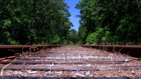 Overgrown rusty train tracks Footage