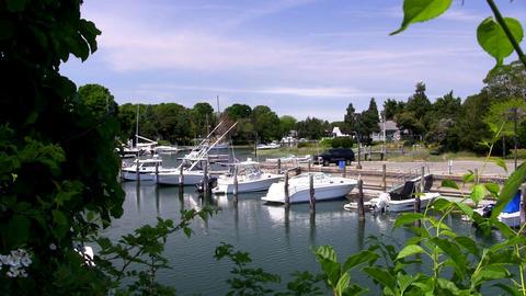 Inland marina boats Footage