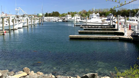 Boats slips docks marina Cape Cod; 2 Footage