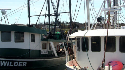 Docked fishing boats cape cod Footage