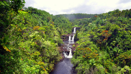 Wide view of Umauma waterfall in Hawaii Footage