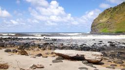 Rocky shoreline in Hawaii Footage