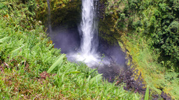 Akaka Falls close up of splash Footage