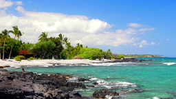 Tropical beach in Kona Hawaii Footage