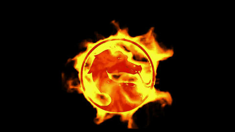 fire dragon symbol Stock Video Footage