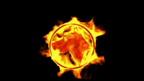 fire dog symbol Stock Video Footage