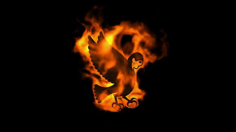 burning fire Egyptian demon,bird of souls Stock Video Footage