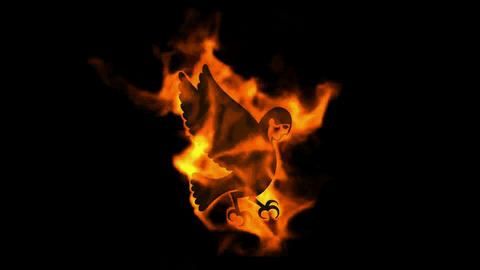 burning fire Egyptian demon,bird of souls Stock Video Footage