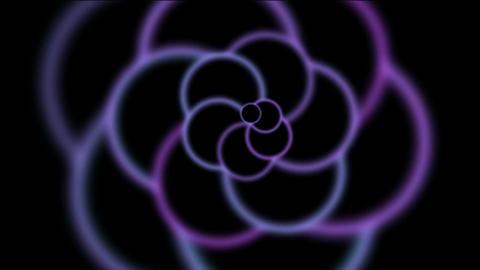 animation of purple flower pattern in black... Stock Video Footage