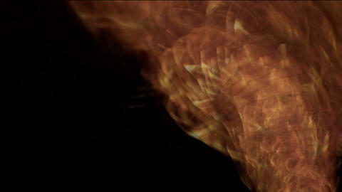 whirl fire tornado,2012,end of the... Stock Video Footage