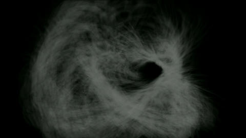 rotation smoke and cocoon fiber,spider silk,mist,cyclones Animation