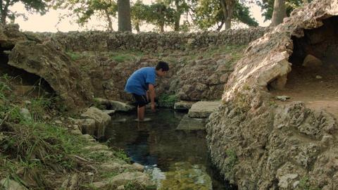 Boy Wades in Spring Water Footage