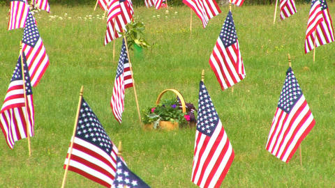 Flower Basket And Flags stock footage