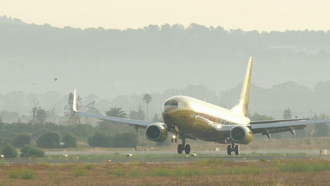 Commercial Plane Landing at Majorca Airport Live Action
