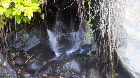 waterfall 01 in nature Footage