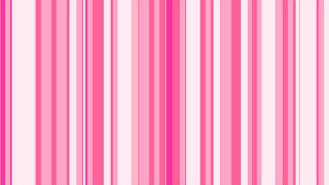Stripes Pop Pink ストライプ Animation