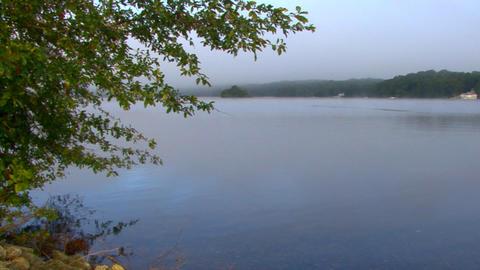 Misty Morning Lake Footage