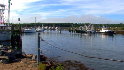 Boaters Leave Marina Footage