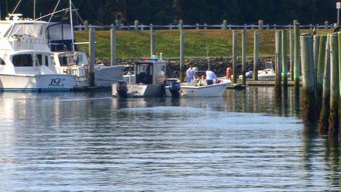 Harbor Helpers Footage