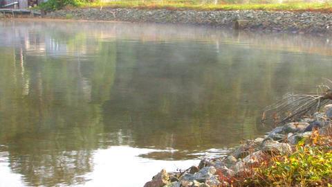 Shoreline Mist Footage