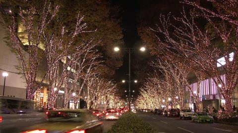 Omotesando christmas illuminated in Tokyo Footage