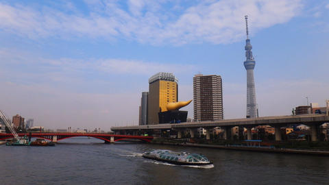 Tokyo Skytree and office buildings in Tokyo from Sumida River side Footage