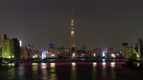 Tokyo Skytree and Kiyosu Bridge Tokyo, Japan Footage