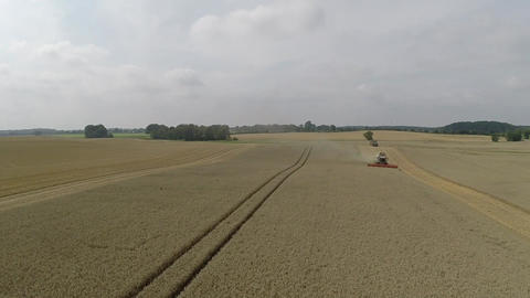 Bird's Eye View Of A Combine Harvester Harvesting Wheat stock footage