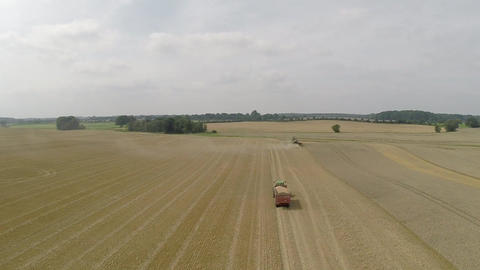 Aerial view of harvesting wheat Footage