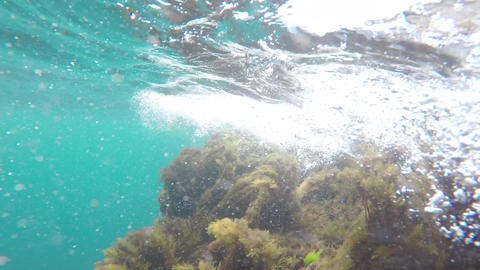 Air bubbles under water Footage