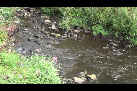 Sheffield Don 4 stock footage
