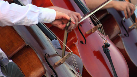 Musicians Playing Contrabass. 4K stock footage