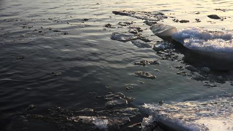 Ice floe floats in water. 4K Footage